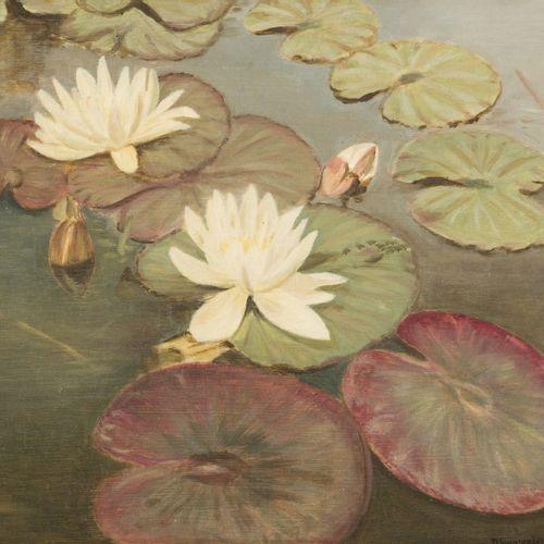 Attributed to D. Smorenberg, 20th. C.. Water lillies. 有签名(右下角),面板油画。Dim.29 x 31,…