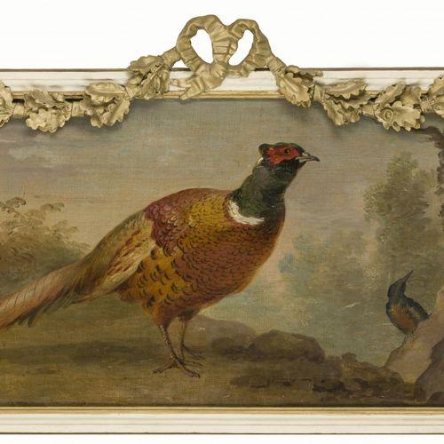 A dessus porte depicting a pheasant and a kingfisher. Huile sur toile, 19e. C. D…