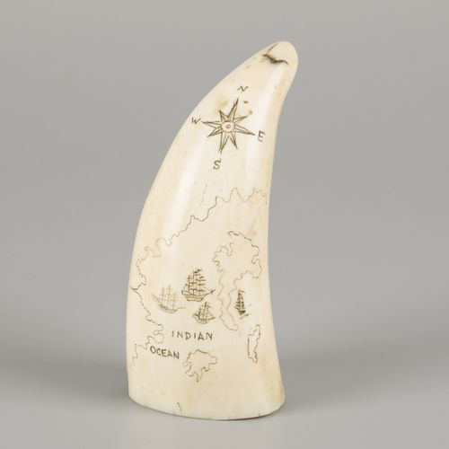 Scrimshawed sperm whale tooth from its lower jaw, marine ivory, 19th century. In…