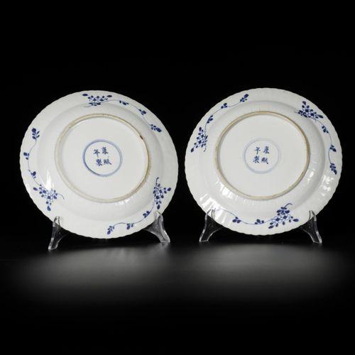 A set of (2) porcelain plates with carp decor, marked Kangxi, China, 19th centur…