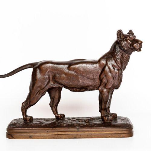 Lionne Alfred JACQUEMART (1824 1896). Lionne debout en bronze à patine brune, si…