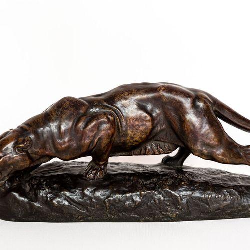 Panthère Clovis Edmond MASSON (1838 1913). Panthère aux aguets en bronze à patin…