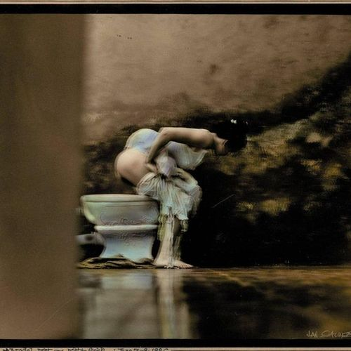 Saudek, J. (b.1935). (A woman hoisting up her clothes, squatting over a toilet).…