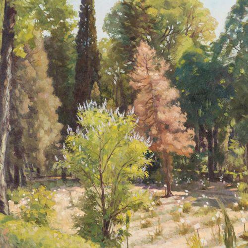 RAFAEL CANTARERO (Sevilla, 1907 1957) Giardino Olio su tela 65 x 80 cm Firmato i…