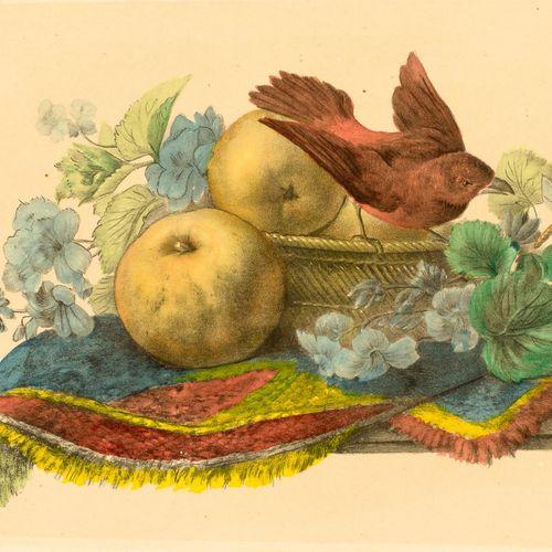ESCUELA ESPAÑOLA, S. XX Coppia di incisioni con frutta e uccelli Incisione a col…