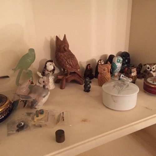 Controller comprising covered boxes, animal subjects, owl subjects and birds