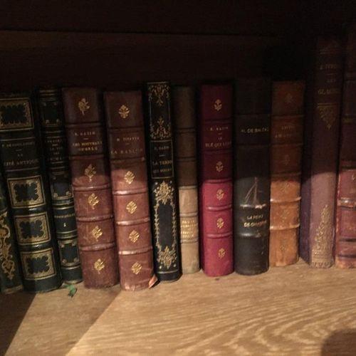 Suite of books (Corneille, Voltaire, Molière...)