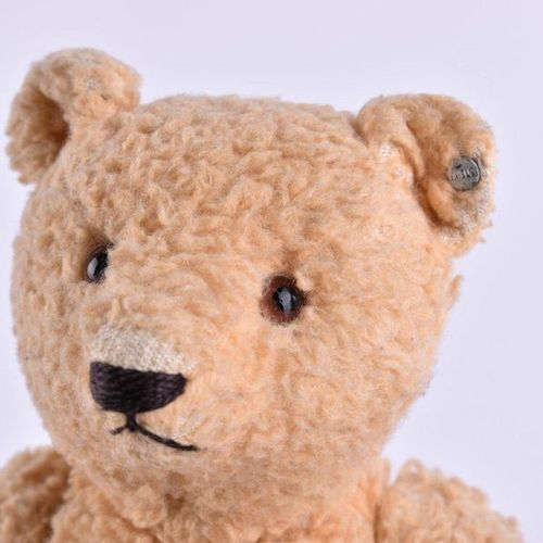Steiff Teddy um 1920/30 | Steiff teddy around 1920/30 good condition, button in …