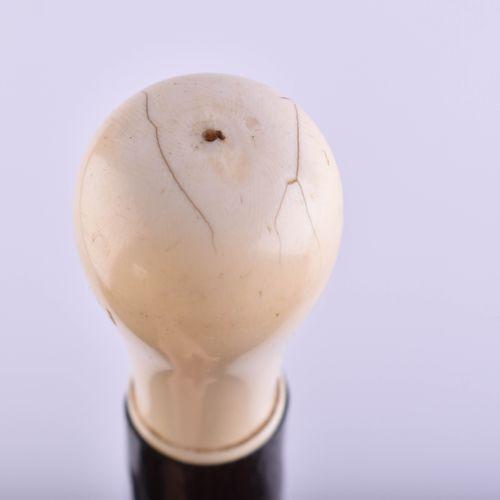 Spazierstock China um 1900 象牙手柄,侧面有东方铭文,长:手柄6厘米,总长71厘米
