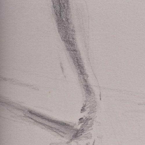 Clemens GRÖSZER (1951 2014) 无标题,女性裸体站立 绘画 纸板上的石墨,55 cm x 37,8 cm,左下方有签名和日期 08.05…