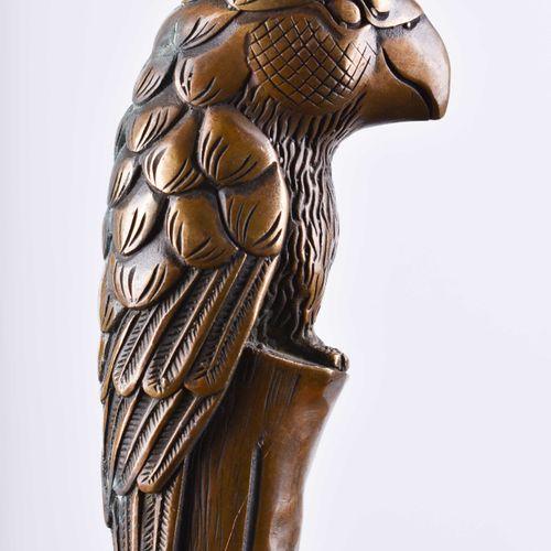 Gehstock um 1920 Poignée en laiton en forme de perroquet, L : 96 cm