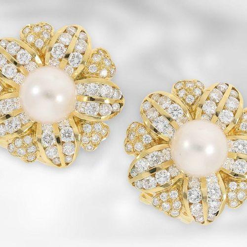 Bijoux d'oreille/broche : perles extrêmement décoratives et inhabituelles/clous …