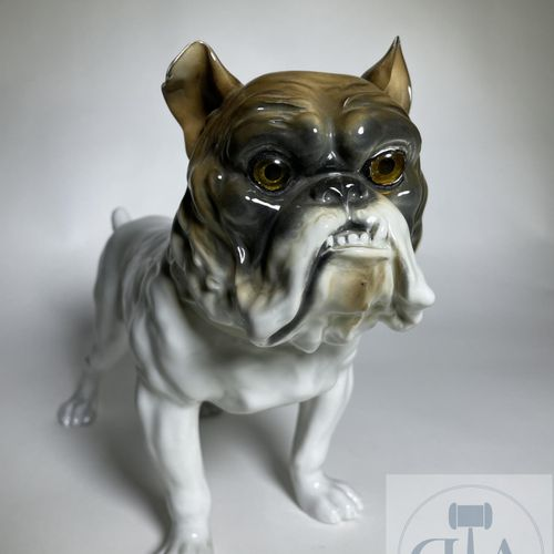 Bulldog dog in porcelain. German quality manufacture around 1950. TBE. 35 X 15 X…