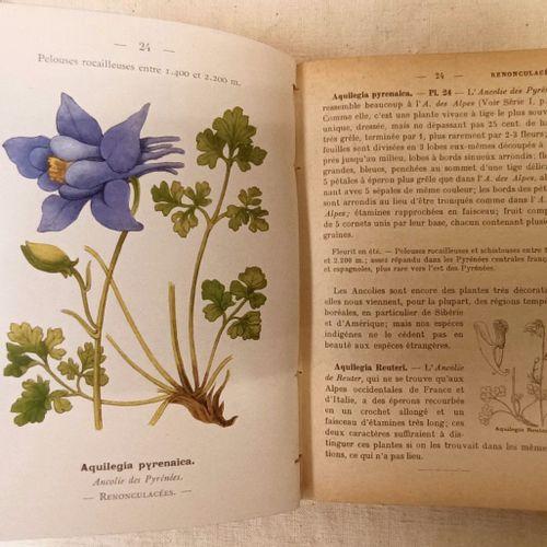FLAHAUT (Charles Henri Marie]. Nouvelle flore coloriée de poche des Alpes et des…