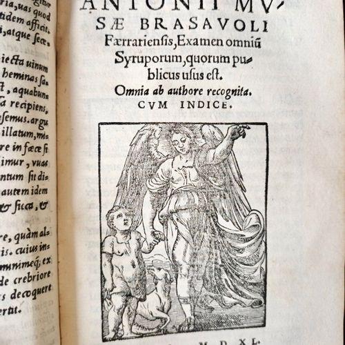 """""""Une des pharmacopées les plus importantes de la Renaissance"""". BRASAVOLA Antonio…"""
