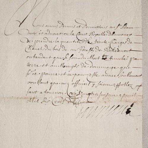 """ARDECHE Document manuscrit, signé De TOURNON. """"Nous avons permis et permettons a…"""