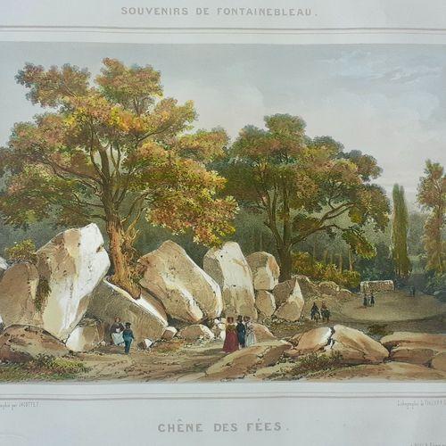 FONTAINEBLEAU. Estampe lithographiée du XIX siècle. CHENE DES FEES. Très bien co…