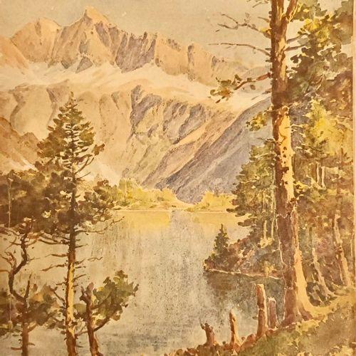 """ARCANGUES (Pierre Comte d') ARLAUD (Docteur) … """"Les Pyrénées. Avant propos de Lo…"""