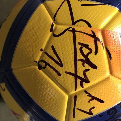 Nagui et l'Équipe de France de football Ballon de football en cuir, signé par Al…