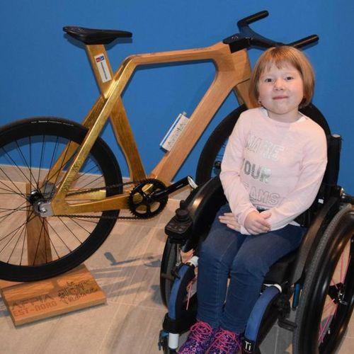 FAMILLE AFM Vélo en bois lamellé collé, doré à la feuille sur le triangle arrièr…