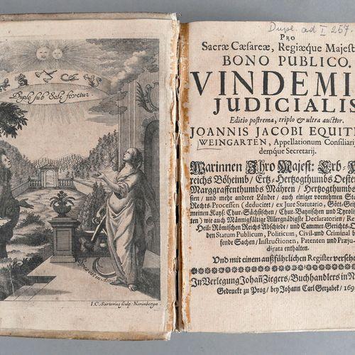 Johann Jakob von Weingarten, Vindemiae judicialis oder üblicher Rechtsproceß im …