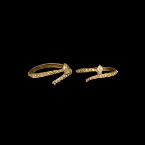 Bague à clous en or Viking. 9e 12e siècle de notre ère. Un anneau d'or penannula…