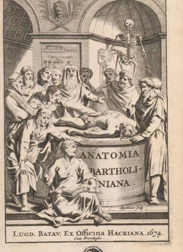 BARTHOLIN (Thomas). Anatome ex omnium veterum recentiorumque observationibus inp…