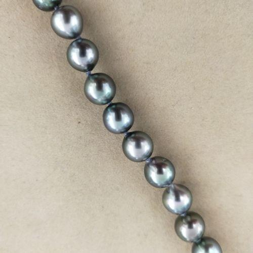 Bracelet composé de 19 perles de culture gris bleuté d'environ 8,8 mm de diamètr…