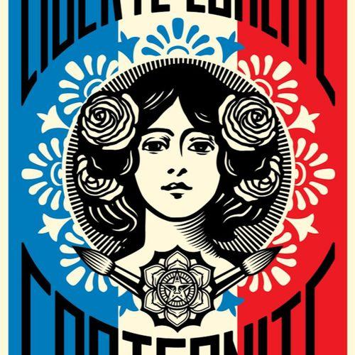 Shepard FAIREY Shepard Fairey aka Obey Giant (USA, 1970)  Freedom Equality Frate…
