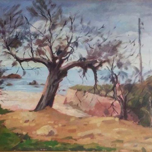 Angiolo Volpe Angiolo Volpe (1943 ) Tamerici 布面油画 单幅作品,右下角和背面有签名。50x70cm Angiolo…