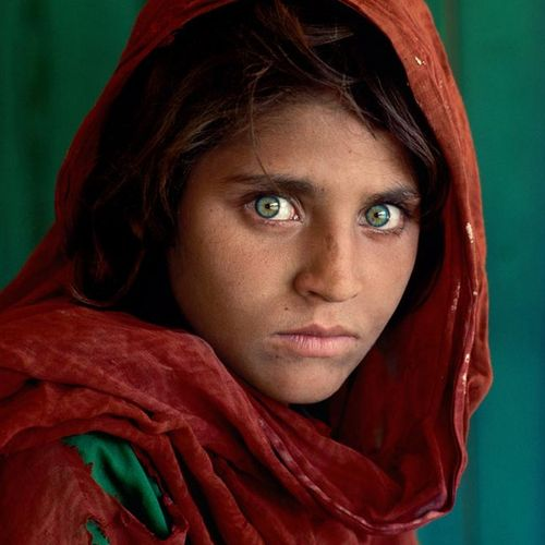 Steve McCurry Steve McCurry  阿富汗女孩  打印在海报纸上  尺寸:20×24英寸/61×51厘米左右。    出售后,由于健康危机…
