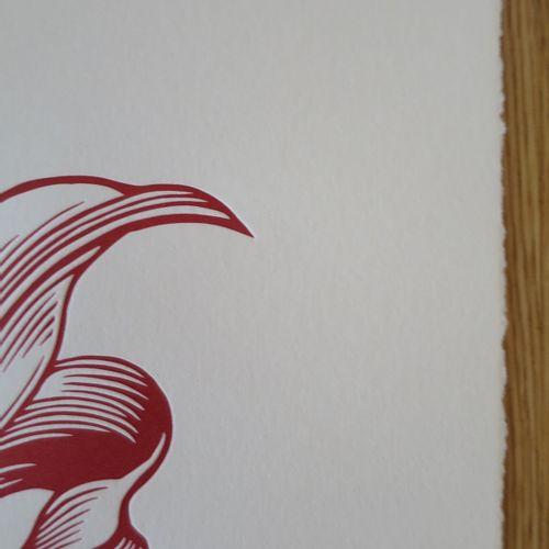 Shepard FAIREY Shepard FAIREY (Obey)  AR 15 LILY, 2021  Impression typographique…