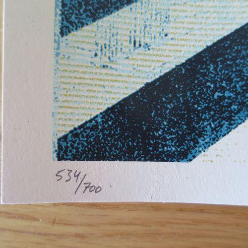 Shepard FAIREY Shepard Fairey (Obey)  隧道视野》第二版(备用蓝色),2018年  丝网印刷在Speckletone奶油纸上…