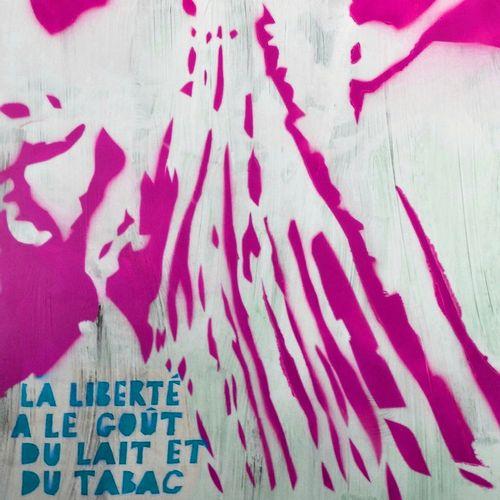 Jean Michel Zazzi Jean Michel Zazzi  La Caïta 2.自由。古尔斯营,1937年,2019年。  丝网印刷品 签名并编…