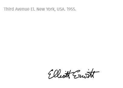 ELLIOTT ERWITT Elliott Erwitt  Third avenue  Tirage C Print signé signé au crayo…