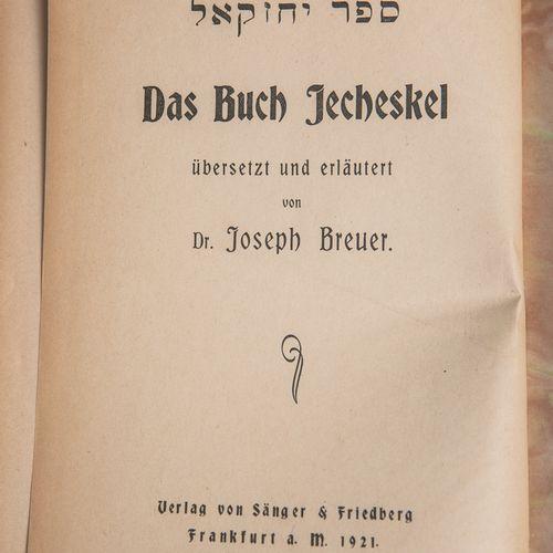 """""""Das Buch Jecheskel"""", traduit et expliqué par le Dr. Joseph Breuer, Verlag von S…"""