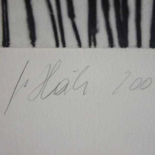 Johannes Haider (österreichisch, 1954 2014), o. T., Linolschnitt, 2004 Johannes …