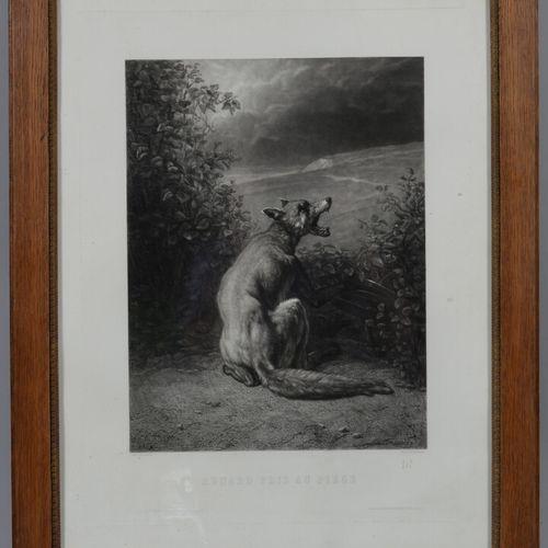 根据TROYON的说法  陷入陷阱的狐狸  黑色的雕刻。  54 x 41 厘米