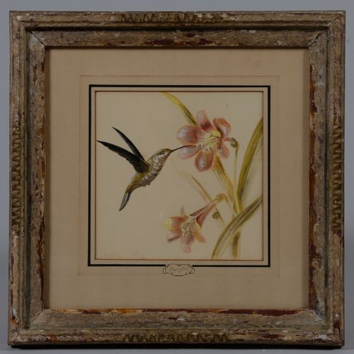 Renato CATALDI (c.1909 1981)  Beya flor  Deux aquarelles et gouache signées en b…