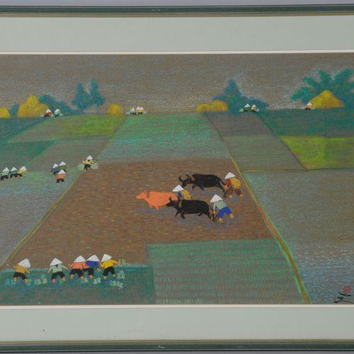 越南学校  稻田里的农民  粉笔画。  50 x 74厘米