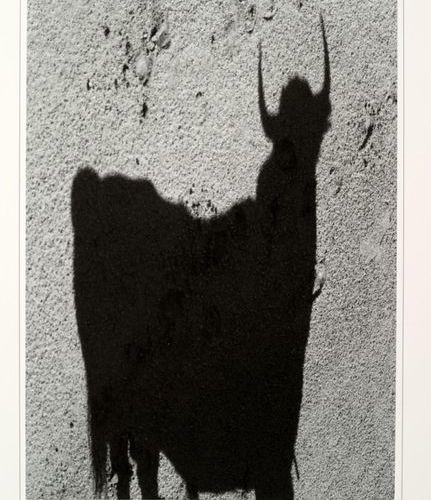 CLERGUE / CHAR (René). Le TaureauPoème by René Char. Photographs by Lucien Clerg…