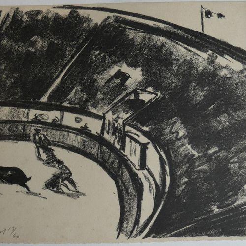 Villeboeuf / BENJAMIN (René) . Southern bulls . Studies by René Goos, illustrati…