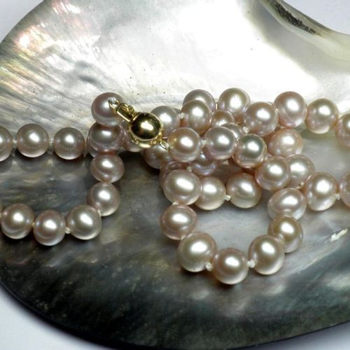 Important necklace in cultured pearls diameter 10,5 11 mm, very nice luster, saf…