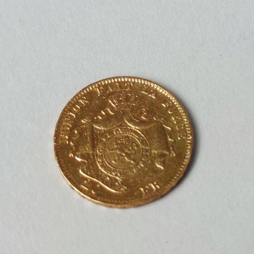 PIECE de 20 Francs en or jaune BELGIQUE Léopold II 1877, Poids : 6.3 g (usures)…