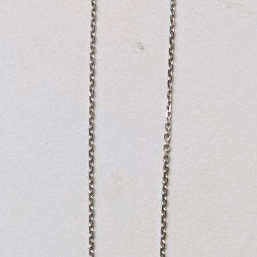 Chaine en or blanc 750°/00, Poids : 4.1g