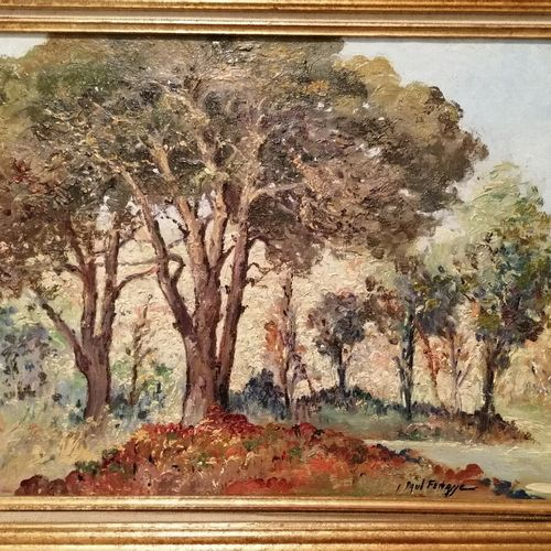 """Paul FENASSE """"paysage aux arbres"""" huile sur toile. 32x45 cm"""