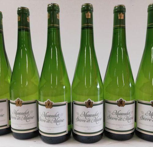 12 bottles of Muscadet Sèvre et Maine 2018. Leroy Chevalier
