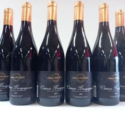 6 bouteilles de Bourgogne rouge. 2017. Côteaux Bourguignons. M.Chatelet