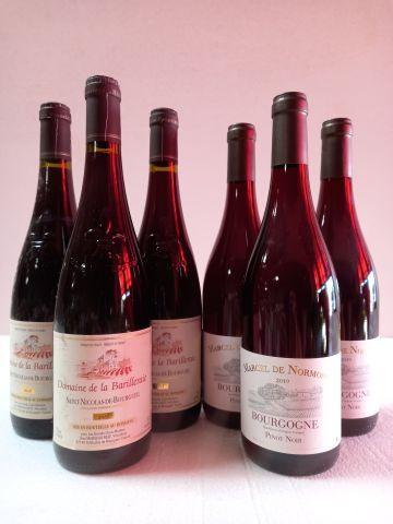 Lot de 6 bouteilles :  3 Saint Nicolas de Bourgueil. 2018. Domaine de la Barille…