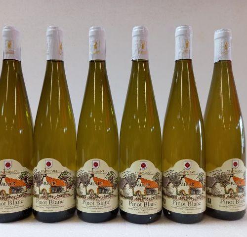 6 bouteilles de Alsace Pinot Blanc. 2019. Domaine Muler. Propriétaire récoltant